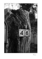 46 (radspix) Tags: nikon fe zoomnikkor 3570mm f3345 arista edu ultra 100 pmk pyro