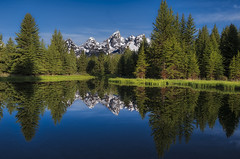 One more from down the trail from Schwabachers Landing - Grand Teton National Park (Wambo Jambo) Tags: bruceikenberryphotography d750 grandtetonnationalpark grandtetons landscape wyoming landscapephotography mountain mountains schwabacherlanding