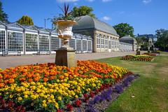 Sheffield Botanical Gardens (Rich Jacques) Tags: botanicalgardens sheffield july 2018 flowers canon eos450d garden