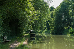 Gyosei Art Trail - Milton Keynes - 1st July 2018 (Trackside70) Tags: gyosei arttrail art sculpture canal miltonkeynes buckinghamshire uk sunshine summer sony dscrx100m3 grandunion