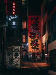 Melbourne Nights-1370576 (Ilia Usmanov) Tags: melbourne night time graffiti alleyway