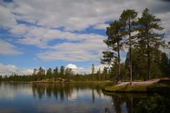 svarttjønna (KvikneFoto) Tags: tynset hedmark norge landskap natur tamron nikon