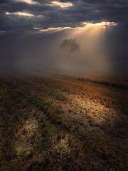 Light and darkness (saveriosalvadori) Tags: