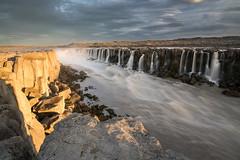 Selfoss (Uldis K) Tags: selfoss waterfall iceland sunset riverbank dettifoss