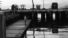 DSC06949 (A Common Courtesy) Tags: a common courtesy wellington auckland new zealand camera photo bw color black white day night monochrome bokeh sony nex 5a nex5a focuspeaking minolta mc pg 50mm 14rokkor fotodiox adapter
