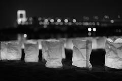 Odaiba, Tokyo, Japan (dasayo) Tags: night light bridge monochrome