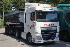 DAF XF 460 Euro 6 PALS BV Vaassen met kenteken 38-BKZ-2 in Het Harde 07-07-2018 (marcelwijers) Tags: daf xf 460 euro 6 pals bv vaassen met kenteken 38bkz2 het harde 07072018 truck trucks camion lkw vrachtwagen vrachtauto transport nederland niederlande pays bas netherlands gelderland guelders 106