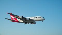QANTAS A380-800 (joe.woods2209) Tags: a6300 lhr a6500 a6000 aircraft airport airbus heathrow a380 a380800 boeing a350900 a350 787900 787 777300 british air malasian qantas etihad airways ethiopian virgin 777 777200 pacific cathay gulf 18105