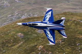 Canadian Display Hornet