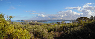 Panoramic Sydney