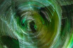 DSC08325 (SunThroughEyelids) Tags: nature green art ambient adventure awesome amazing a7ii aqua auckland landscape dark makro car night light follow hiking travelling exposure sky u