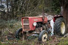 Ursus C350 (Ivan van Nek) Tags: lisleendodon hautegaronne france midipyrénées 31 occitanie tractor abandoned ruraldecay rusty nikon nikond7200 d7200