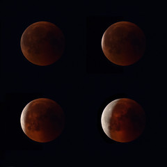 Lunar Eclipse 2018 Finland (mika_wist) Tags: mooneclipse moon lunar lunareclipse space sky night finland