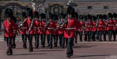 The Queen's Guard (Magic life gallery) Tags: london england unitedkingdom gb the queen's guard