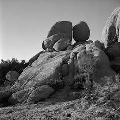 Propinquity in granite (ADMurr) Tags: california joshuatree jtnp national park daa603 rolleiflex f 28 80mm zeiss planar