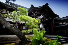 Sengakuji Temple, Tokyo (El-Branden Brazil) Tags: zen buddhism japan japanese temple tokyo sacred ronin