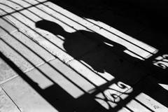Umbral/Threshold (RoryO'Bryen) Tags: umbral threshold copyrightroryobryen roryobryen cambridge rangefinder leicam3 rollo film analogue analoguephotography ilfordpanf50 noiretblanc umbo scannedfromnegative selfdeveloped rodinal leica m3