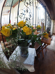 yellow roses (chrisinplymouth) Tags: flower rose yellow plymouth devon england uk cw69x university catholic chaplaincy vase table church narthex lobby rc xg fisheye inexplore city
