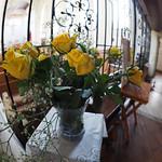 yellow roses thumbnail