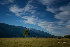 early in the evening... (J. Kaphan Studios) Tags: jacksonhole wyoming ranchlife ranching landscape landscapephotography mountains grandtetons grandtetonnationalpark clouds cloudporn bluesky sunset trees fujixseries fujifilm travel travelphotography