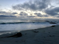 Monterey Bay, CA (- Adam Reeder -) Tags: california ca united states west coast pacific wwwkk6gpvnet kk6gpv adam reeder adamreeder areed145 sea ocean beach sky water sand bay seashore sandbar y2018 m05 d25 lat370 lon1220 asilomar grove monterey photo jpg apple iphone x bluetick wreck lakeside leatherbackturtle promontory lakelandterrier groenendael airedale