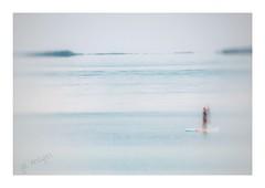 Paddling Impressions (GR167) Tags: paddleboard sup highkey impressionism