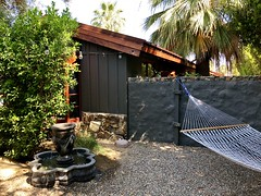 Moving to Texas! First stop Palm Springs (- Adam Reeder -) Tags: tree palm springs ca california west coast adam reeder kk6gpv photo photography patio chainlinkfence y2018 m06 d06 lat340 lon1170 taquitz canyon river estates riverside united states jpg apple iphone x moving texas first stop mosquitonet peacock windowscreen cab mobilehome swing suspensionbridge ashcan vase
