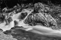 a mountain stream (withcamera) Tags: water valley amountainstream stone rock gangwondo pyeongchanggun southkorea