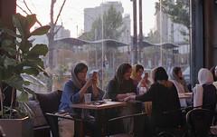 Afternoon (nima.mojiz) Tags: nikon f100 nikonf100 analog film filmphotography streetphotograohy tehran iran dailylife agfa agfavista agfa400 agfavista400 analogphotography filmisnotdead