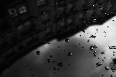 Contour 297.365 (ewitsoe) Tags: city ewitsoe street warszawa erikwitsoe summer urban warsaw carhood hood rain metal bnw blackandwhite mono outside drops droplets black white analog canon 50mm