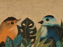 MURALES QUE EMBELLECEN EL ENTORNO (su-sa-ni-ta) Tags: murales pinturas paseo caminata obras de arte paredes cordoba argentina julio valle calamuchita pajaritos pintados