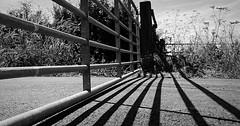 Shadows Ain't A Barrier. July 2018 (SimonHX100v) Tags: blackandwhite blackwhite monochrome monotone greyscale grayscale bw bnw perspective pointofview lowpov pov depthoffield dof outdoor outdoors outside simonhx100v sonyhx100v hx100v