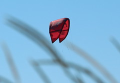 The paragliding (irio.jyske) Tags: sky colors red blue shore beach landscapepic lanscape landscape landscapephotograph landscapes landscapephotos lakescape landscapepics landscapephotographer photographer photograph photos wind warm nice free flight paragliding fly summer hot