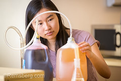 Young Asian-American woman concentrates on food science experiment, College Park, Maryland (Remsberg Photos) Tags: kitchen lab student experiment science learning asianamerican observation procedure foodscience research smart intelligent study trial beaker focus concentration biology working woman youngadult curious liquid collegepark maryland usa