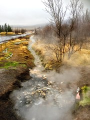 geyser, Iceland (cattan2011) Tags: iceland streetpicture streetphoto streetphotography streetart geyser waterscape traveltuesday travelphotography travelbloggers travel naturelovers natureperfection naturephotography nature landscapephotography landscape 冰岛
