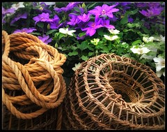 basket & rope (india_snaps) Tags: flowers basket rope lobsterpot