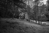 Creepy house in the woods (s1price) Tags: abandoned house collapsing woods forest blair witch creepy scary monochrome 1635mm canon bw black white derelict structure maryland usa us