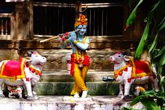 Govinda Jaya Jaya (debmalyamazumder) Tags: god nature supreme power