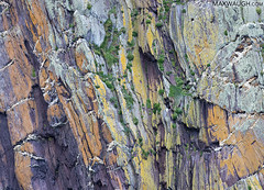 Colorful Cliffs (Max Waugh Photography) Tags: cliffs europe ireland dinglebay atlanticocean colorful colors patterns lichen ireland18 maxwaugh 5photosaday