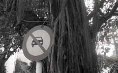 no parking (elffyb) Tags: elffyb voigtlander bessa bessar3a nokton nokton40 nokton40mm kodak kodakportra400 portra400 film analog streetphotography sailorstrap vietnam hanoi oldquarter