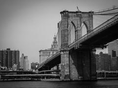 Brooklyn Bridge, Manhattan Island Cruise (bobbex) Tags: bigapple newyork newyorkbw manhattan bw blackandwhite blackwhite skyscrapers cityscape usa america brooklynbridge