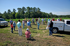 Extension agents and directors tour Broadway Hemp. (ncsuweb) Tags: farm farming field cals crop crops harnettcounty hemp