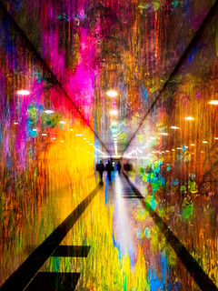 Tunnel of wonders