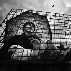 Freedom (gezimania) Tags: istanbul kuspazari edirnekapı sokak street streetphotography sokakfotografciligi sokakfotoğrafciligi