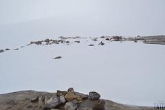 Blancos del Cocuy (Tato Avila) Tags: colombia colores cielos nikon naturaleza nubes nieve snow piedras nevado nevadodelcocuy colombiamundomágico
