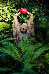 California2018-09 (PuraVida Photo) Tags: buddha redwoods northerncalifornia joy happiness