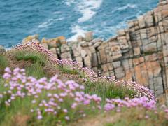 Pen-Hir (Pauline Moinereau) Tags: bleu océan chaos mer paysages rochers coastline seascape sea rocky shore headland wave coast