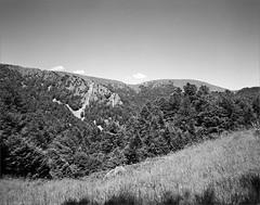 Spitzkœpfe - Vosges (JJ_REY) Tags: montagnes mountains solsticedété summersolstice film bw largeformat 4x5 ilford fp4plus toyofield 45a sironarn 150mm rodinal epson v800 alsace france