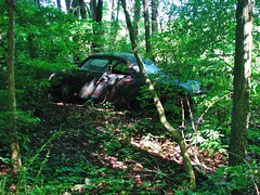 THE LONG AGO JUNKED 1949 FORD IN JUNE 2018 (richie 59) Tags: ulstercountyny ulstercounty newyorkstate newyork unitedstates fordmotorcompany ford trees 1949ford townofesopusny townofesopus abandoned richie59 stremyny stremy america outside monday summer weekday automobile auto motorvehicle vehicle car junkcar junked fordcoupe fomoco 2018 1949fordcoupe june2018 june252018 abandonedcar oldcar 2010s 1940scar americancar uscar 2door twodoor coupe hudsonvalley midhudsonvalley midhudson usa us ny nys nystate oldford oldfordcoupe rustyford rusty rusted rust rustedout rustycar faded fadedpaint blackcar sideview overgrown