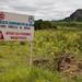 USAID_PRADD II_Cote D'Ivoire_2014-124.jpg